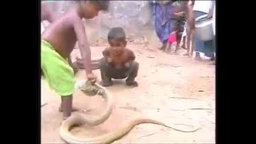 مار بازی بچه